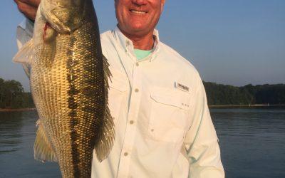 Jimbo's Lake Lanier Fishing Report: July 26, 2017