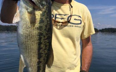 Jimbo's Lake Lanier Spotted Bass Fishing Report: 9/27/2017